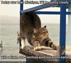 Today over Lake Michigan, it'll be partly cloudy    with a light, odd-smelling wind out of the north