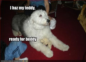 I haz my teddy,       ready for beddy