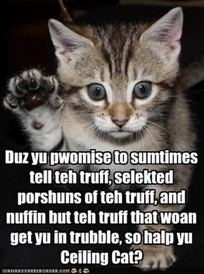 The Kitteh Oath