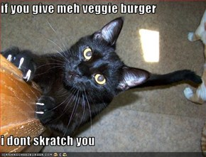 if you give meh veggie burger  i dont skratch you
