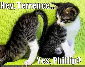 Hey, Terrence...  Yes, Phillip?