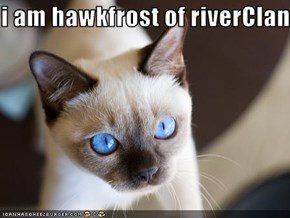 i am hawkfrost of riverClan