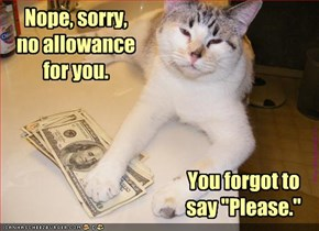 Nope, sorry,  no allowance for you.