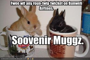 Fwee wif any roun-twip twicket on Bunweh Airlines.