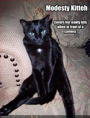 Modesty Kitteh