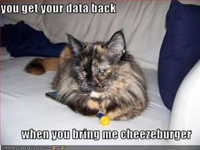 you get your data back  when you bring me cheezeburger