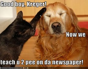 Good boy, Kreger! Now we teach u 2 pee on da newspaper!