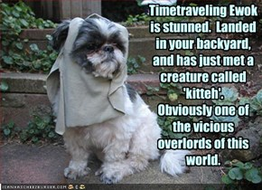 Timetraveling Ewok is stunned.  Landed in your backyard, and has just met a creature called 'kitteh'.  Obviously one of  the vicious overlords of this world.