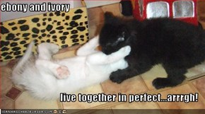 ebony and ivory   live together in perfect...arrrgh!