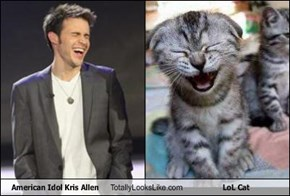 American Idol Kris Allen Totally Looks Like LoL Cat