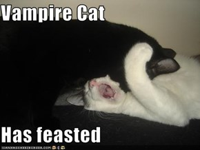 Vampire Cat  Has feasted