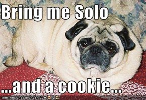Bring me Solo  ...and a cookie...