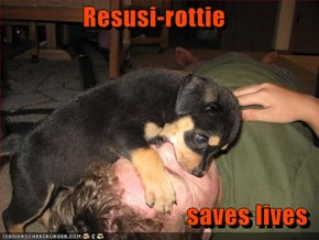 Resusi-rottie  saves lives