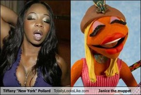 "Tiffany ""New York"" Pollard Totally Looks Like Janice the muppet"