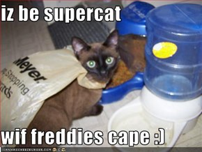 iz be supercat  wif freddies cape :)
