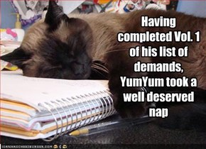 Having completed Vol. 1 of his list of demands, YumYum took a well deserved nap