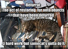 Refurral: The act of restoring  fur onto objects that have been defurred