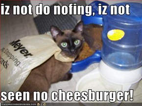 iz not do nofing, iz not    seen no cheesburger!