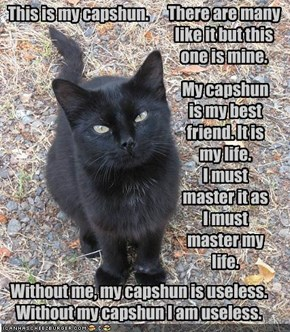 Full Metal LOLcat