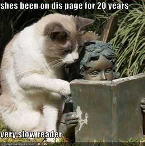 shes been on dis page for 20 years  very slow reader