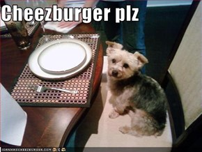 Cheezburger plz