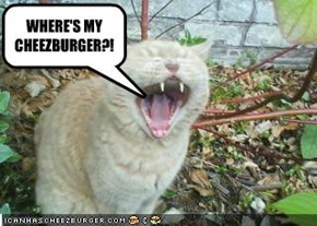 WHERE'S MY CHEEZBURGER?!
