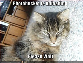 Photobucket is Uploading  Please Wait