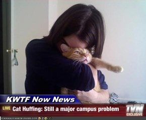 KWTF Now News - Cat Huffing: Still a major campus problem