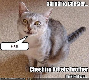 Sai Hai to Chester...