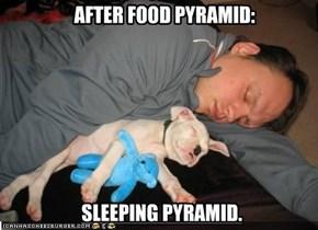 AFTER FOOD PYRAMID: