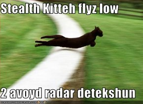Stealth Kitteh flyz low  2 avoyd radar detekshun