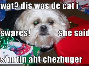 wat? dis was de cat i  swares!                she said somtin abt chezbuger