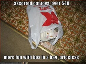 assorted cat toys: over $40  more fun with box in a bag: priceless