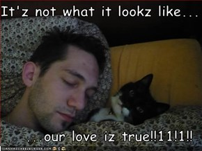 It'z not what it lookz like...  ...our love iz true!!11!1!!
