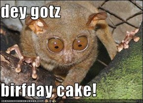 dey gotz  birfday cake!