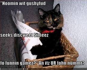 """Hoomin wit gushyfud  seeks discweet Simeez  fo funnin gamez?"" An itz UR fohn nummr?"