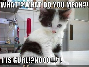 WHAT!?WHAT DO YOU MEAN?!   I IS GURL!?NOOO!!!1!