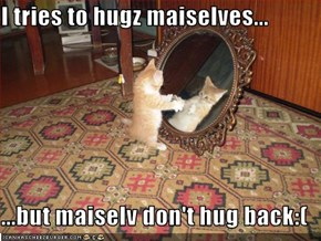 I tries to hugz maiselves...  ...but maiselv don't hug back:(