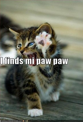I finds mi paw paw