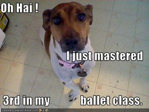 Oh Hai ! I just mastered  3rd in my             ballet class.