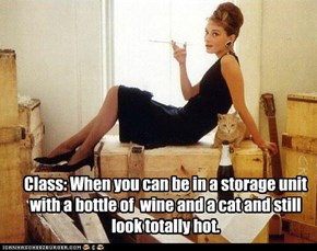 Class: When you can be in a storage unit with a bottle of  wine and a cat and still look totally hot.