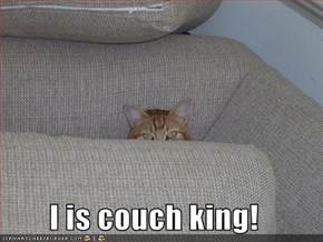I is couch king!