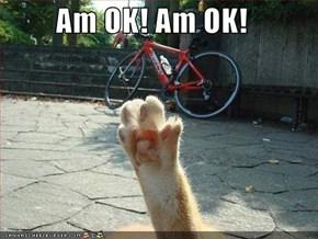 Am OK! Am OK!
