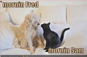 `mornin Fred  `mornin Sam
