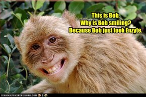 This is Bob.  Why is Bob smiling? Because Bob just took Enzyte.