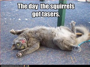 The day  the squirrels got tasers.