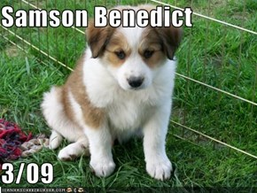 Samson Benedict  3/09
