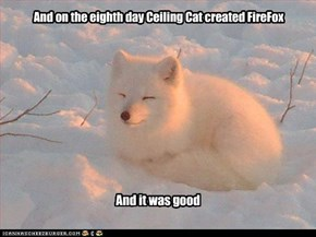 And on the eighth day Ceiling Cat created FireFox