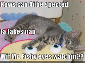 Hows can Ai be spected  ta takes nap Wif Mr. Fishy eyes watchin??