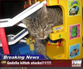 Breaking News - Godzila kitteh atacks!!1!!!!